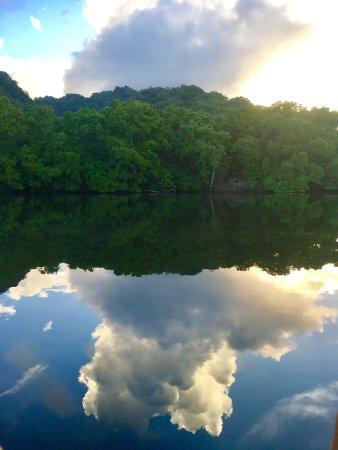 Pacific Treelodge Resort照片