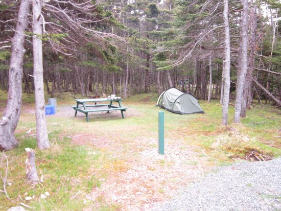 Frenchman's Cove, Canada: Tent pitch