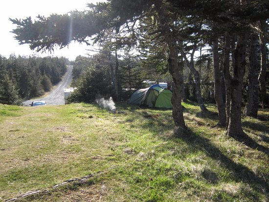 Chance Cove Provincial Park: Tent area and approach track