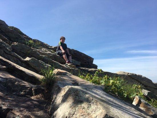 Pinnacle Mountain State Park: Climbing top of pinnacle