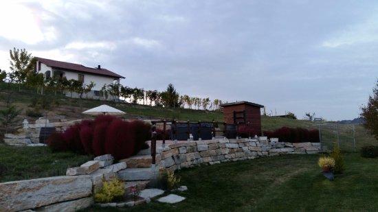 Fontanile, Italy: zona relax