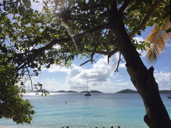 Virgin Island Eco Tours - Honeymoon Beach Day Pass: honeymoon bay