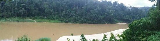 Kuala Tahan, มาเลเซีย: IMG-20170528-WA0020_large.jpg