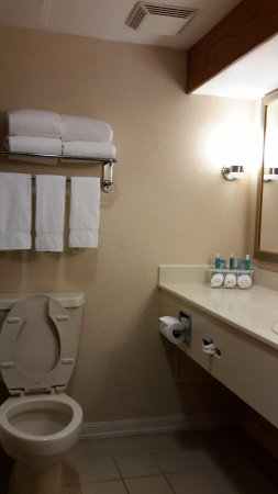 Holiday Inn Express Hotel & Suites Allentown - Dorney Park Area: Our bathroom