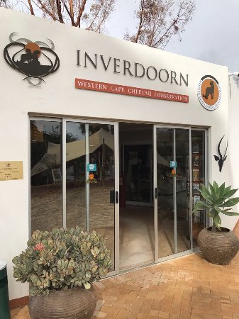 Inverdoorn Game Reserve : Having tea outside the restaurant under the wind and cold weather is strange, why can't visitor