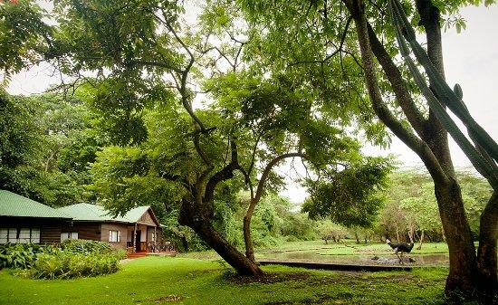 Mount Meru Game Lodge & Sanctuary: The grounds