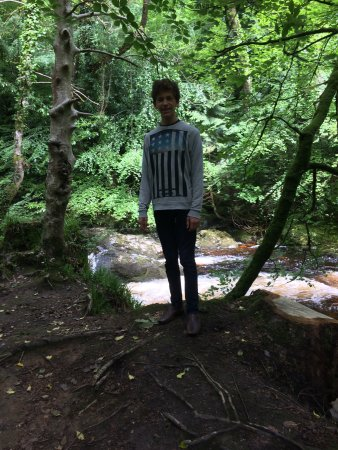 Ivybridge, UK: Family trip