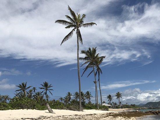 Nisbet Plantation Beach Club: Beach
