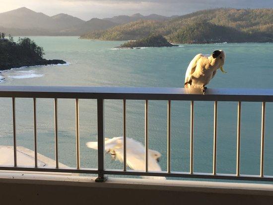 Reef View Hotel: photo0.jpg