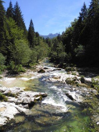 Srednja vas v Bohinju, Slovenia: IMG_20170609_143135_large.jpg
