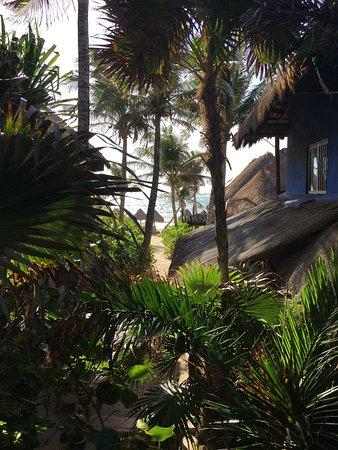 Hotel CalaLuna Tulum: view from balcony, amazing breeze!