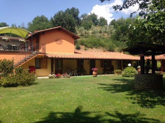 Castelfranco di Sopra, Italy: Tutte gli alloggi si affacciano su questo giardino, sull'altro lato, la piscina
