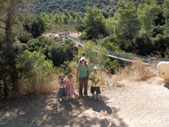 Hanging Bridge at Nesher Park: View of one of the bridges