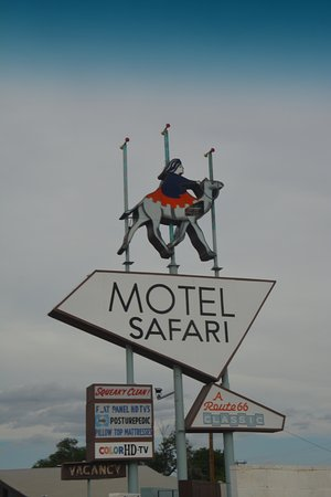 Motel Safari Photo