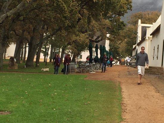 Constantia, África do Sul: photo2.jpg