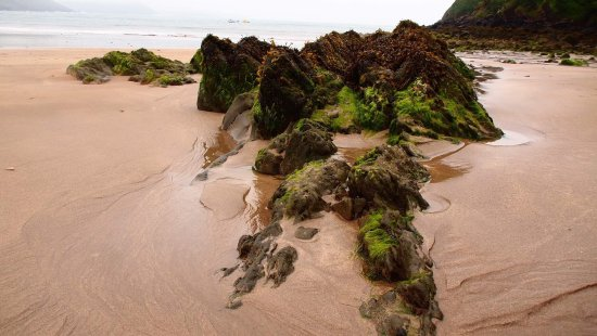 Freshwater East Beach: photo1.jpg