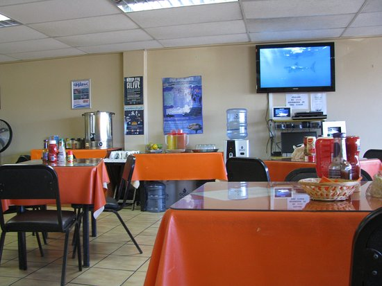 Simon's Town, South Africa: Lugar de briefing y comida
