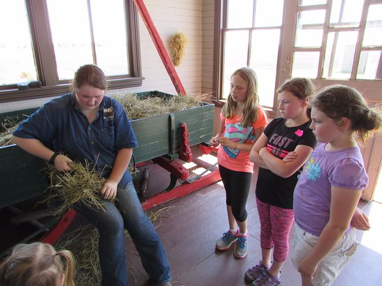 De Smet, SD: Banding together straw to toss into the fireplace to keep warm during the winter's months.