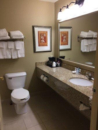 Country Inn & Suites by Radisson, Rome, GA: photo5.jpg