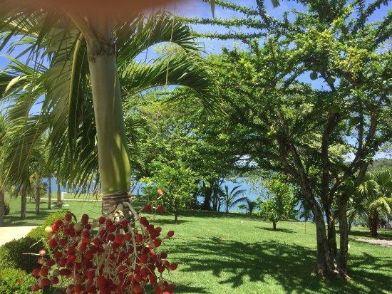 Boca Chica, Panama: photo7.jpg