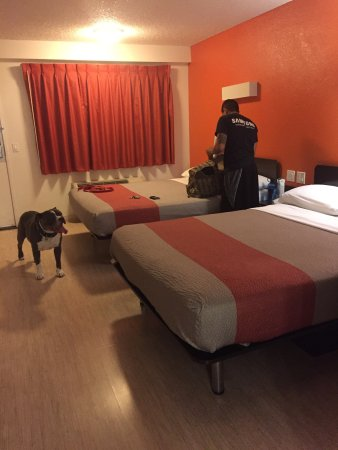 Motel 6 Anaheim Maingate: photo0.jpg
