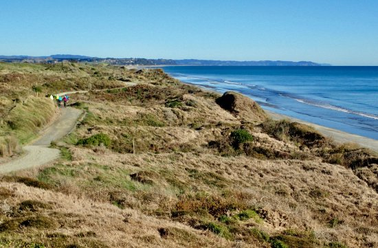 Opotiki, Nya Zeeland: dunes trail june 2017