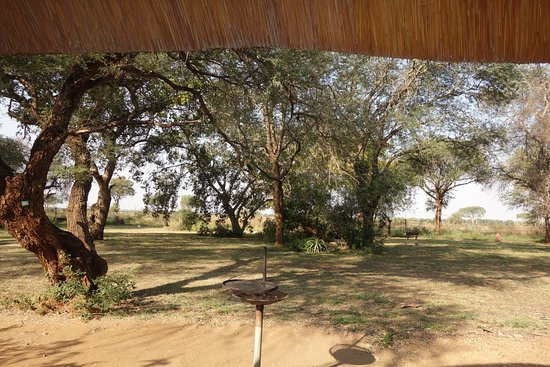 Satara Rest Camp: View from G 174