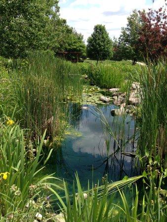 Newton, IA: Water garden looking north