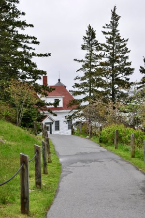 Bass Harbor Head Light - Paved Path To The Lighthouse