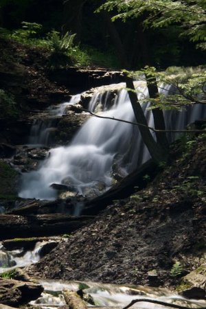Owen Sound, Kanada: Weavers Creek Falls side view
