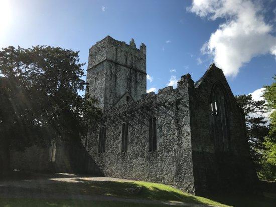 Muckross Abbey : The abbey