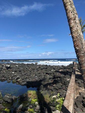 Pahoa, Hawaje: Ocean view form the park
