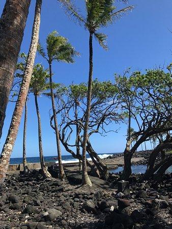 Pahoa, Hawaje: east side of the pool