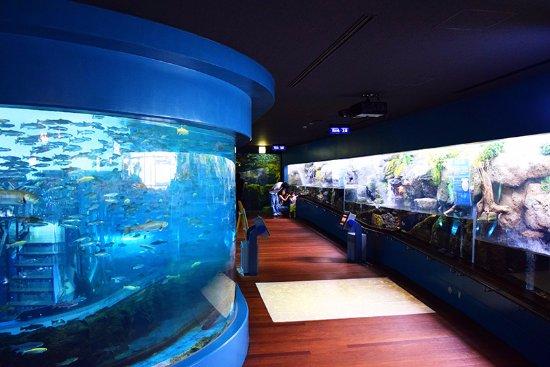 Fuji Yusui no Sato Aquarium