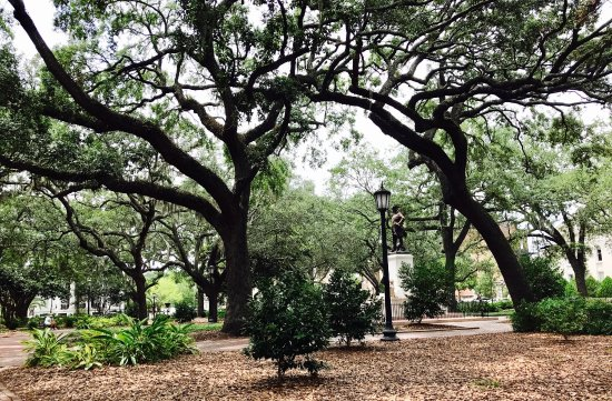 Savannah Belle Walking Tours : photo4.jpg