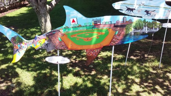 Chatham, MA: Ballpark Shark