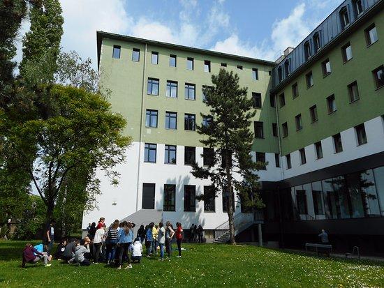 Vienna Brigittenau - Youth Hostel: Open spaces within the hostel's premises.