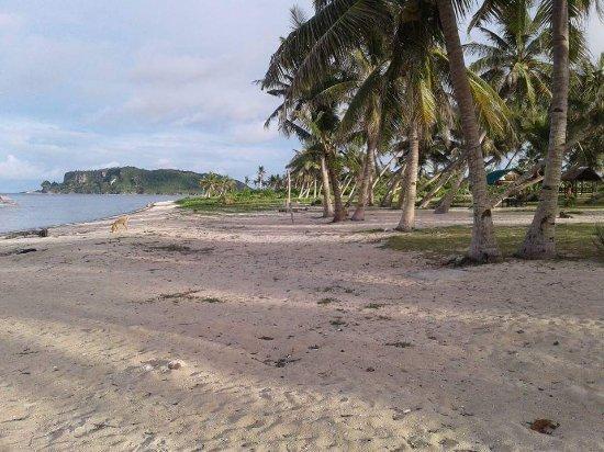 Dumpao Beach Resort: Dumpao guiuan is a simple big beach area. No tech,no tv. Just u and nature. Family run business