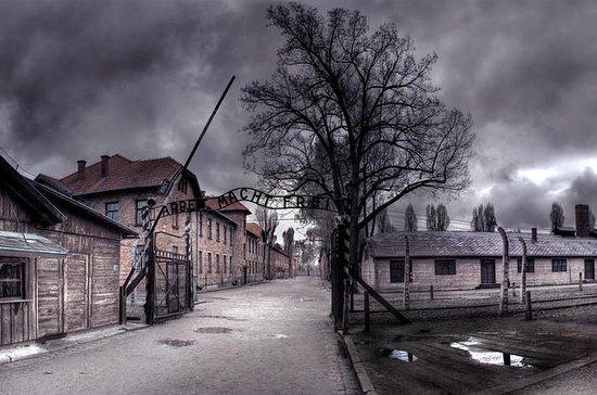 Auschwitz-Birkenau Historical Tour ...