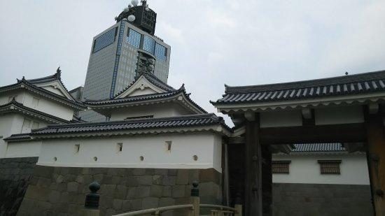 Shizuoka castle : DSC_0649_large.jpg