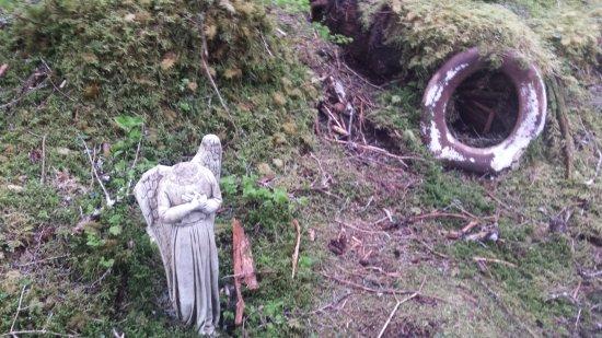 Kayakers Cove: The Toilet Seat Graveyard