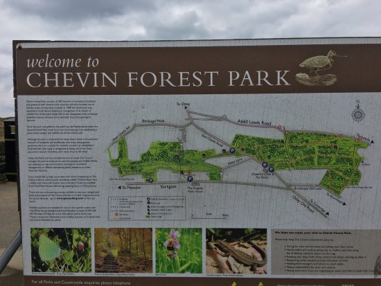 Chevin Forest Park: 1st