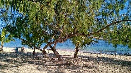 Снимок Остров Тонгатапу
