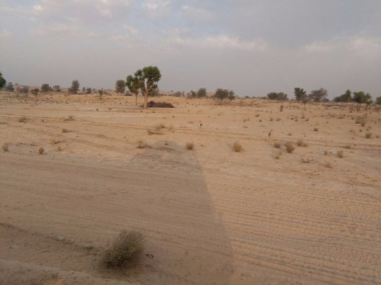 Rajasthan Trekking - Day Treks: @ rajastan desert