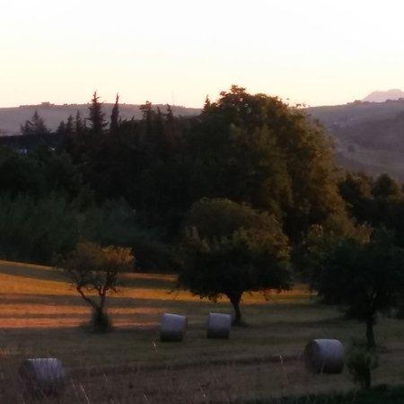Montalto delle Marche, Italia: Agriturismo San Francesco