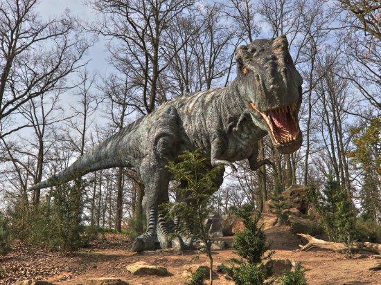 DinoPark Plzeň: t-rex_large.jpg