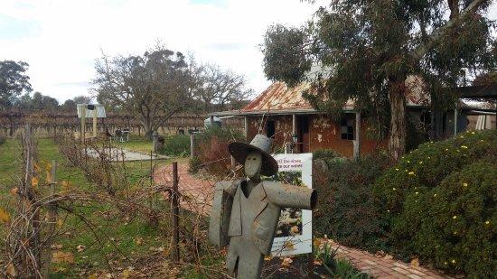 Barossa Valley, Australia: Gibson