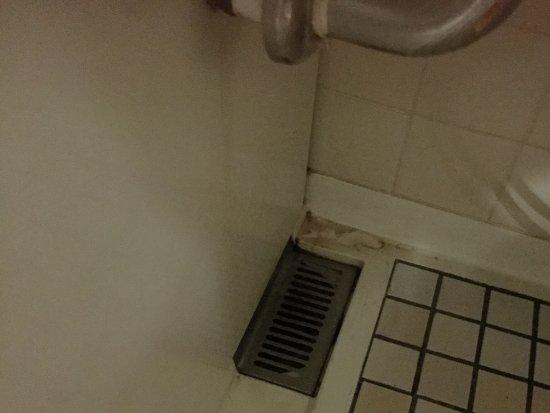 Matsusaka, Japón: 取れない汚れ?私が泊まったお部屋だけならいいんだけど・・・