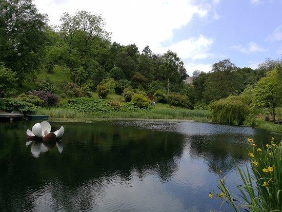 Grewelthorpe, UK: Lakeside