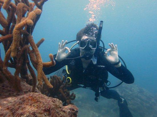 Ocean Lovers Taganga